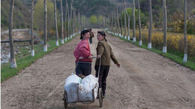 Thu hoạch lương thực của Bắc Hàn giảm 9% so với năm 2017