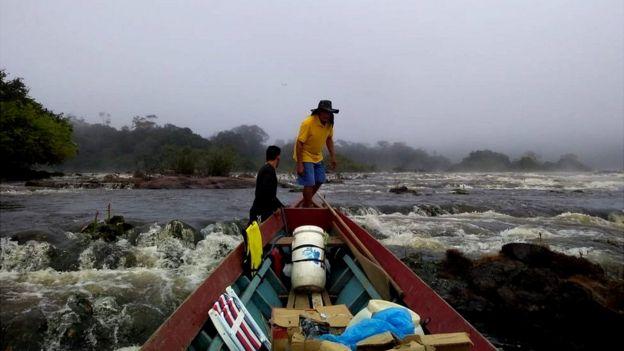 Expedição em busca da árvore mais alta da Amazônia
