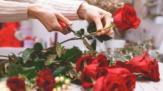 Woman prepares red roses