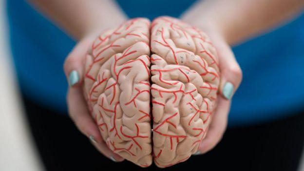 La maladie de Parkinson est une maladie neurologique chronique, qui affecte le système nerveux.