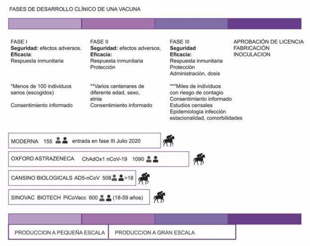 Fases de desarrollo de una vacuna. Estado de los ensayos clínicos de las vacunas contra SARS-CoV-2