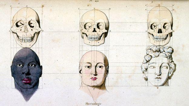 "Una ilustración anatómica de frenología, del ""Dictionnaire pittoresque d'histoire naturelle et des phenomenes de la nature""-1833/1834."