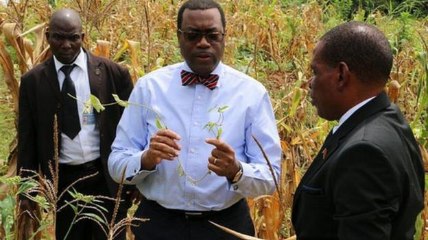 Ainwumi Adesina in a field of crops (Image: World Food Prize)