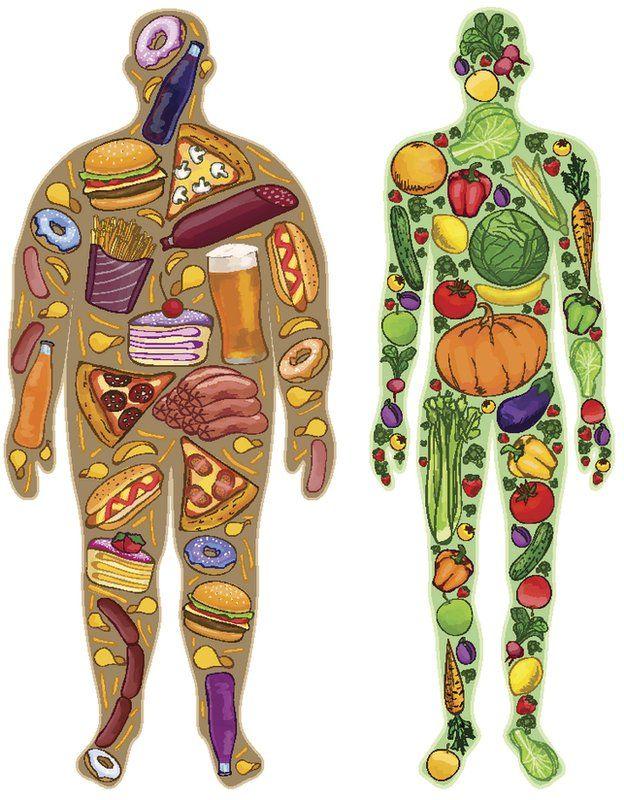 Cuantas calorias quema el cuerpo humano al dia