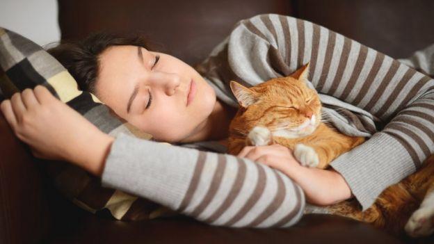Спящая девушка и кот
