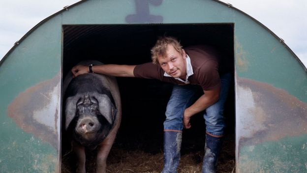 Jimmy Doherty and a pig