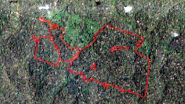 Imagem de satélite de área da floresta