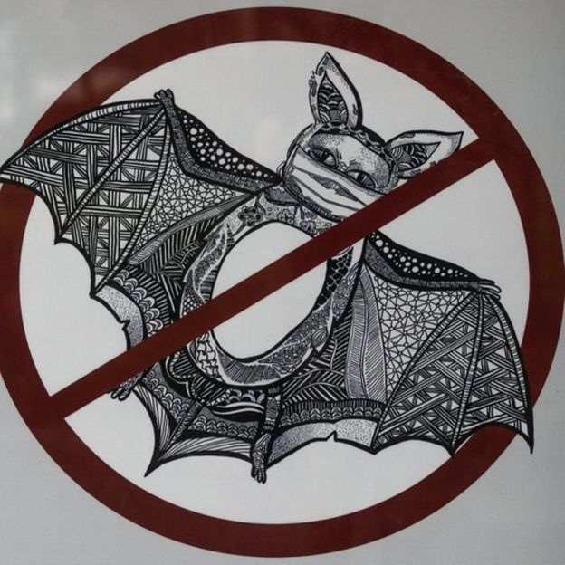 Imagen de un murciélago con tapaboca.