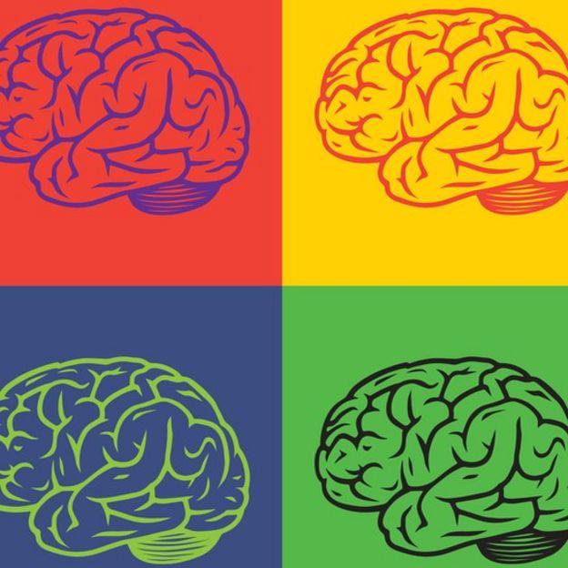 Dibujo de cerebros con colores.