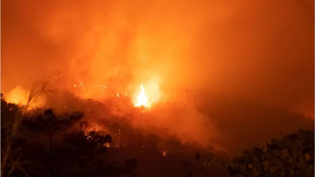 Incêndio em floresta amazônic