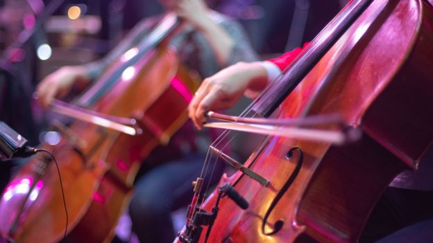 Sección de cuerdas de una orquesta.