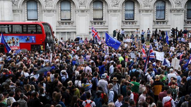 Anti-Brexit demonstrators in Whitehall