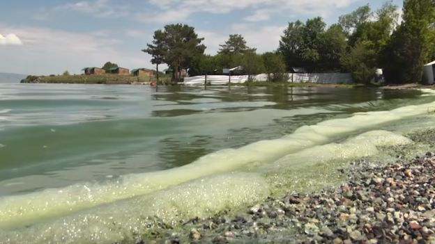 Armenia's iconic lake faces algae threat - BBC News