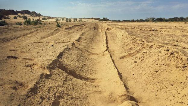 Desert scene near Agadez