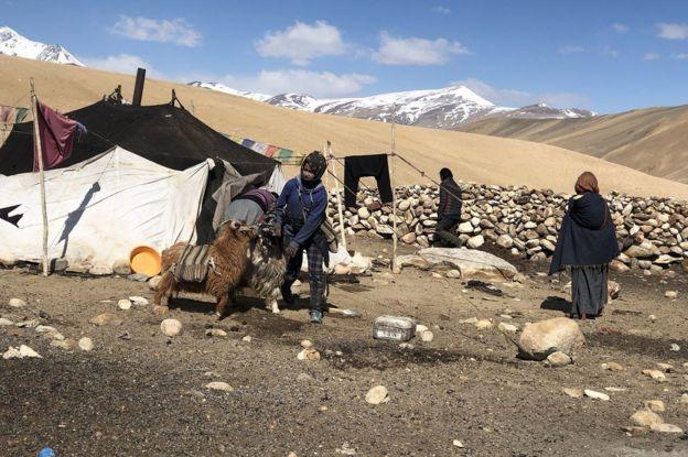 拉达克的居民多是牧民,他们依靠放养牲畜生存。