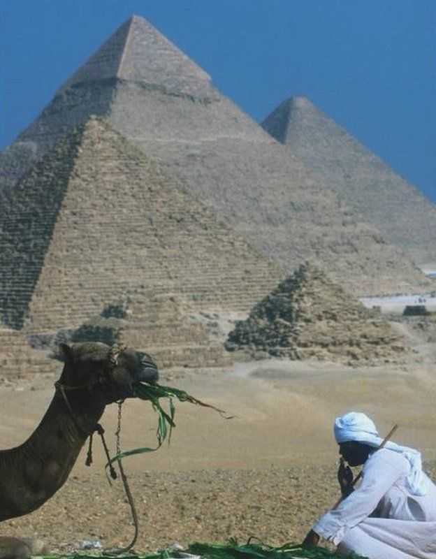 A man sits with a camel before the pyramids