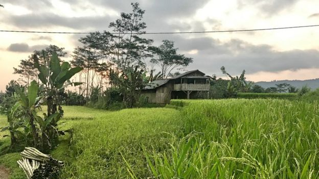 Una granja en Java