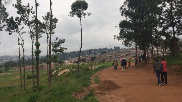 Nyarutarama