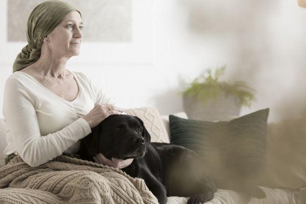 La terapia asistida por animales reduce el estrés en pacientes. Una mujer con cáncer está sentada en un sofá, acariciando a un simpático perro negro.