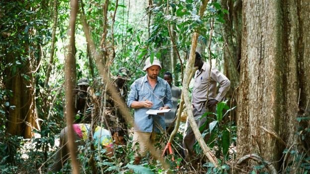 O pesquisador Aaron Davis analisando o café arábica no Sudão do Sul