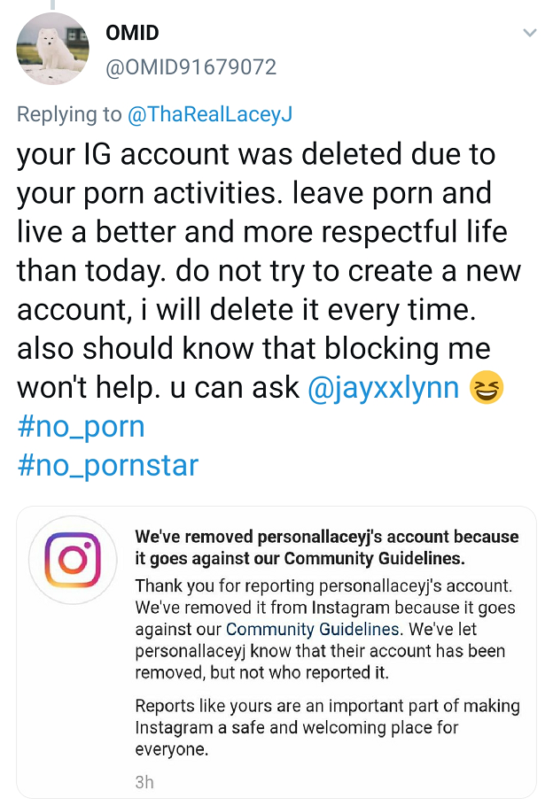 A screenshot from the Twitter account of Anti-porn campaigner Omid who has claimed responsibility for getting accounts removed