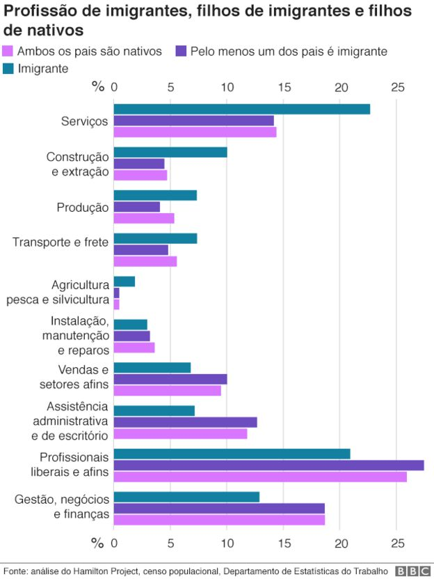 Gráfico sobre profissão de migrantes