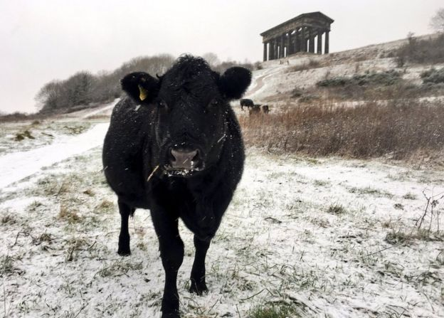 Snow falls on England's east coast beaches - BBC News