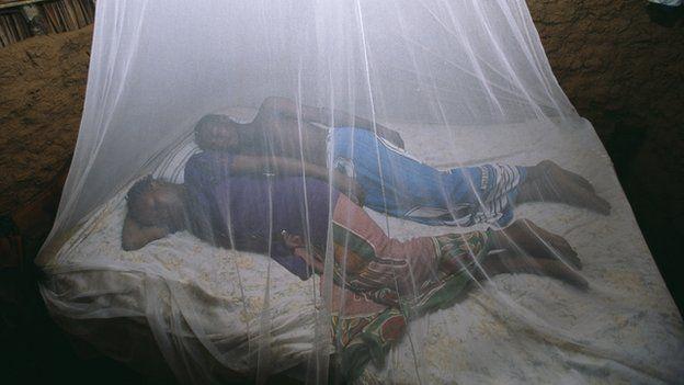 Couple sleeping under a bed-net