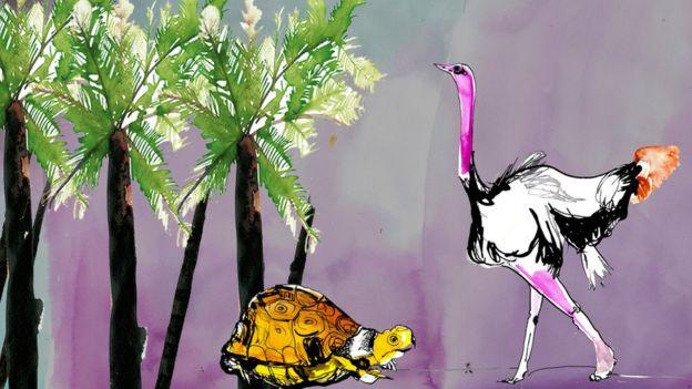 Turtle and bird illustration