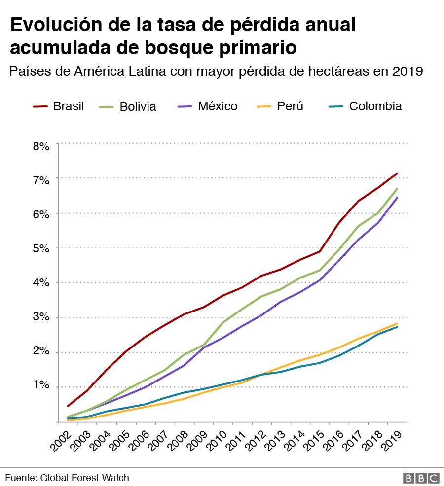 Evolución de la tasa de pérdida anual acumulada de bosque primario