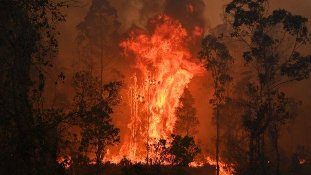 Fires in Bobin, 350km north of Sydney, on 9 November