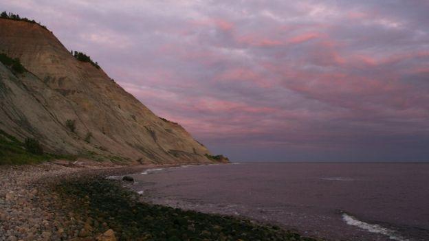 ฟอสซิลที่นำไปสู่การค้นพบครั้งนี้ ได้มาจากชายฝั่งทะเลขาวทางตะวันตกเฉียงเหนือของรัสเซีย