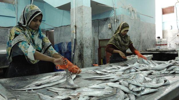 برمی، بنگالی