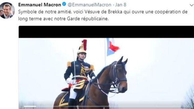 法國送給中國的國禮——八歲的共和國衛隊駿馬「維蘇威」