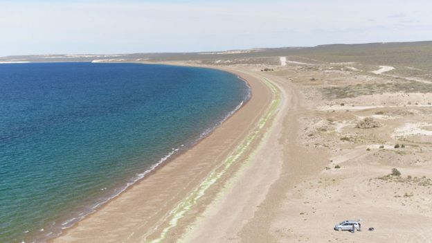 Costa de Península Valdés