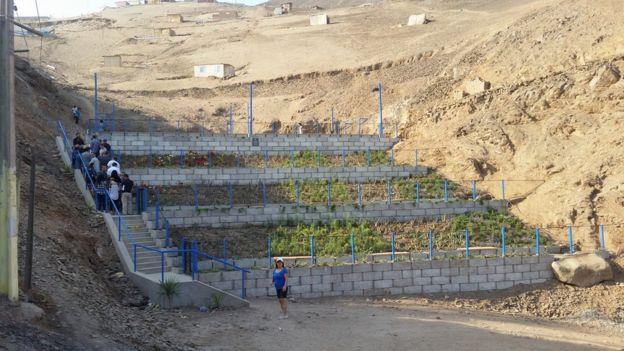 Vista de las plantas en las gradas hacia el parque central de Eliseo Collazos