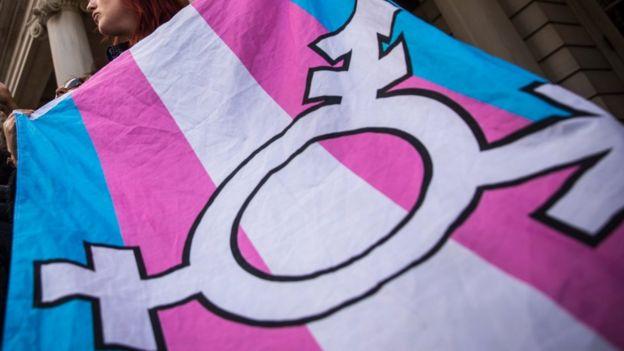 transgender bayrağı