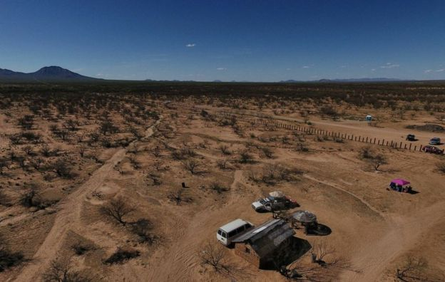 Desierto de Sonora, México.