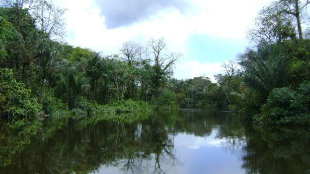 Reserva no Amapá