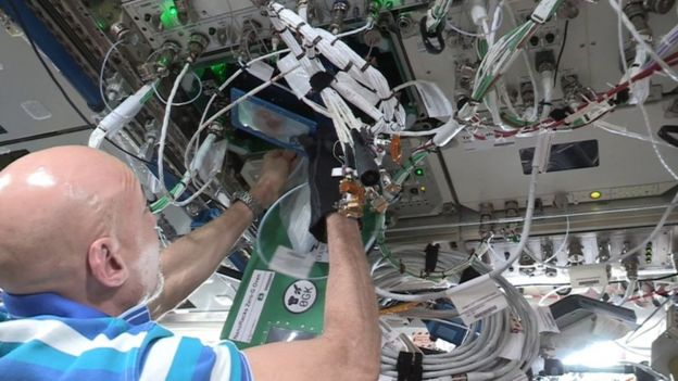 Luca Parmitano baking cookies on board the International Space Station