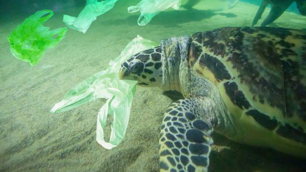 Plástico.