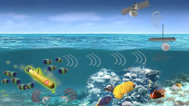 A artist's impression of how the marine sensor system might work