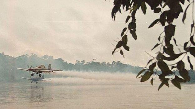 Avión fumigando