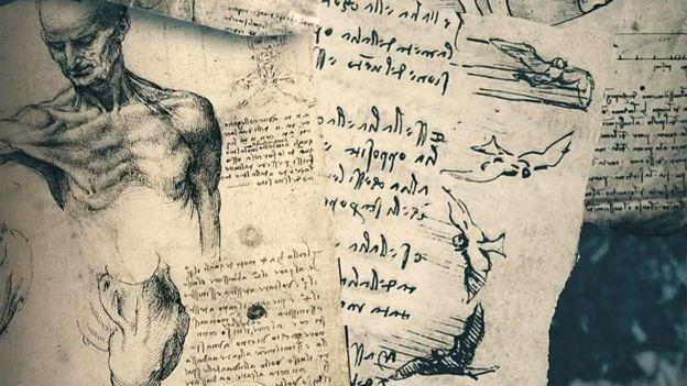 Humanos y animales en escritos de Da Vinci