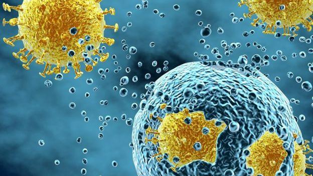 ۶ پرسش دربارهٔ سرماخوردگی و آنفلوآنزا