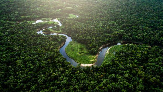 Rio em meio a floresta amazônia visto de cima