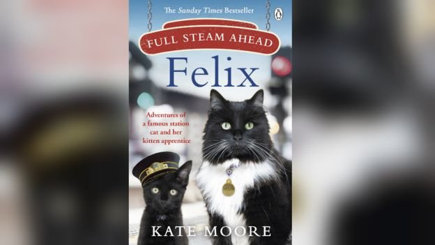 The commuter cats who became fur-mous _110002564_felixfullsteamaheadbackground