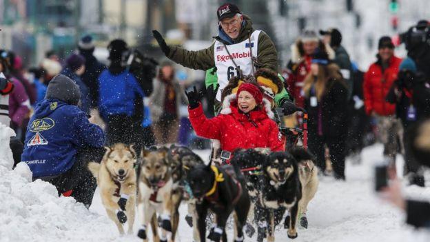 Snowmobile 'driven into dog-sleds' in Alaska Iditarod race