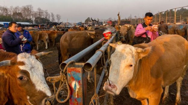 çin'de et pazarı