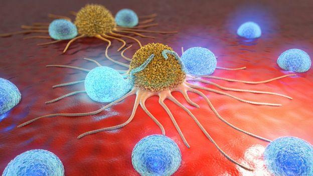 imagen en 3D de células cancerosas